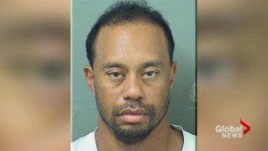 Tiger Woods found 'asleep at the wheel' before DUI arrest