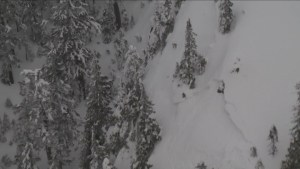 Sad end to search for missing snowshoer in B.C.