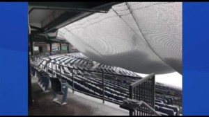 What happens when a snowstorm hits a baseball stadium