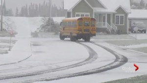 Snow hits Newfoundland as schools prepare for summer break