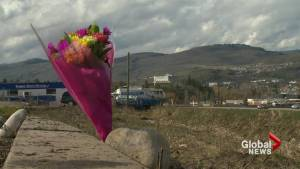 5 killed over 3 days on B.C. roads (02:06)