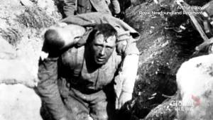 Armistice anniversary:  a dark day at Beaumont Hamel