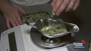 Policy challenges before pot legalisation next July: report