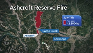 Wildfire tears through Loon Lake