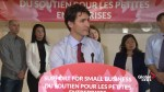 Trudeau: small business tax rate cut will not be a shield for wealthy