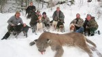 Outrage over controversial 'wolf-whacking' contests