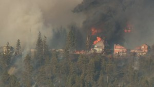 Police: 29 fires in Okanagan over last 4 years were deliberately set