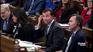 Liberals slam Conservatives for 240 Facebook ads to attack 16 MPs