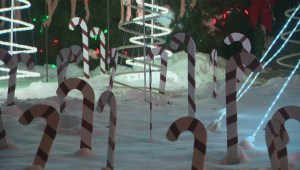 Candy Cane Lane's ups and downs over 50 years