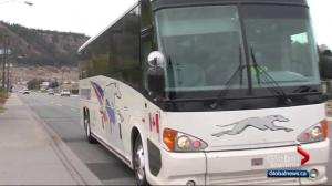 Rural options after Greyhound cancels bus service