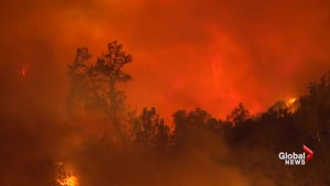 Firefighters in western U.S. facing dire situation