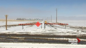 Pooling water, road and field flooding a concern in rural southern Alberta