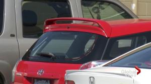 Langley woman assaulted after approaching owner who allegedly left dog in hot car