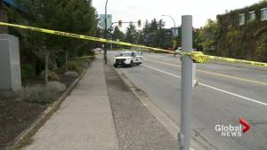 Man fatally stabbed behind Semiahmoo Shopping Centre in South Surrey