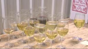 Taste of success: Niagara winery rises to top after 6 years