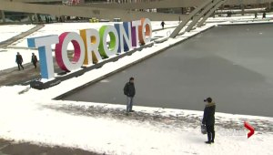 Ontario man launches $2.5-million lawsuit over TORONTO sign