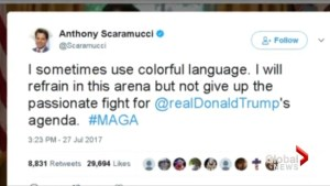 Scaramucci attacks White House colleagues in profanity-laced rant