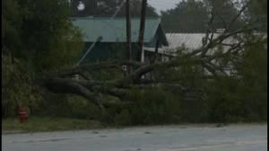 Hurricane Michael: Storm pelts Georgia with heavy rains leaving behind trail of destruction
