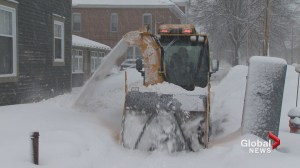 Storm shuts down schools and businesses and causes power outages in N.B.