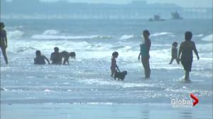 Teens injured in separate shark attacks at North Carolina beach