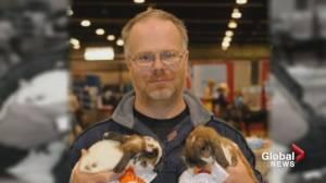 Calgarian sentenced in horrific rabbit hoarding case speaks out