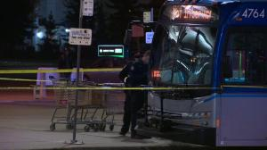 Edmonton Transit bus driver stabbed by youth