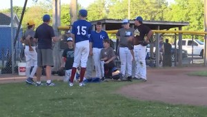 Kingston Colts are playing in a new baseball league