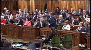 Mulcair slams Conservatives for ignoring report on sexual assault in the military