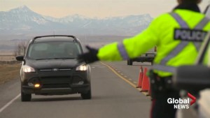 All hands on deck for daytime checkstop near Standoff, Alta.