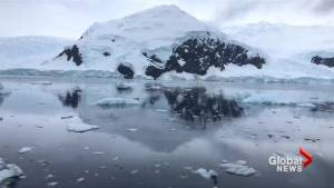 Plastic waste in Antarctica highlights scale of global pollution – Greenpeace