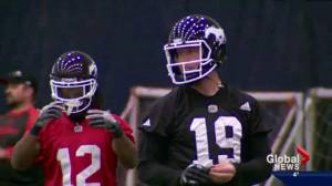Grey Cup 2016: Quarterbacks could be the most interesting story (03:15)