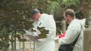 Vancouver Island nursery put under quarantine