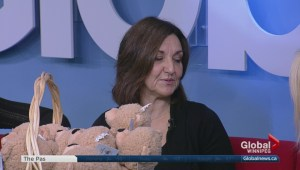 Ice Crystal Gala preview on Global News Morning