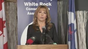 Federal Election 2015: Dianne Watts' acceptance speech