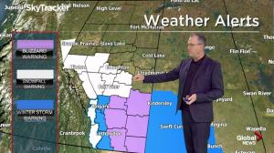 Edmonton weather forecast: 'Winter spring day'
