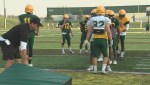 A look at the University of Alberta Golden Bears' offensive backfield