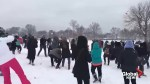 Mass snowball fight in Washington's National Mall