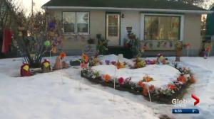Winterscapes program encourages Edmontonians to embrace winter