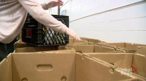 Sask. food bank use on the rise