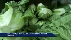 Antibiotic resistant E. coli found on produce