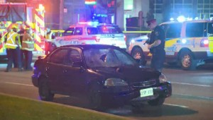 Pedestrian dead after being hit by vehicle in Scarborough