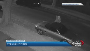 Security footage released of person damaging parked car in Vancouver's West End