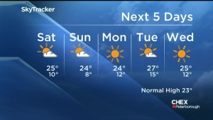 Sunshine and warm weather expected for the weekend