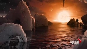 NASA new planets could host life