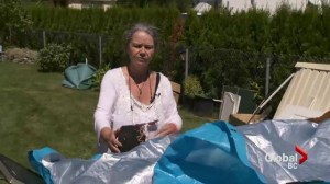 Senior's shed crushed by landlord