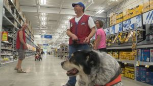 Lowe's employee with service dog helping customers in a store that helped him