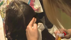 New head lice policy has parents scratching their heads