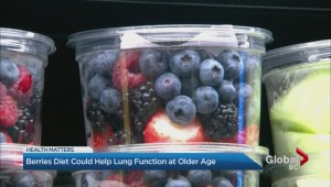 Berries diet could help lung function at older age
