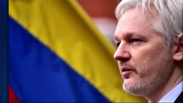 Julian Assange settles in London prison