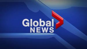 Global News at 5 Edmonton: Nov. 5
